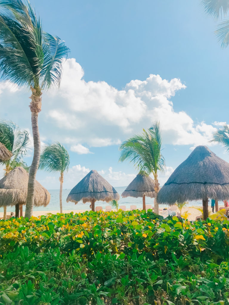Resort Review Excellence Playa Mujeres